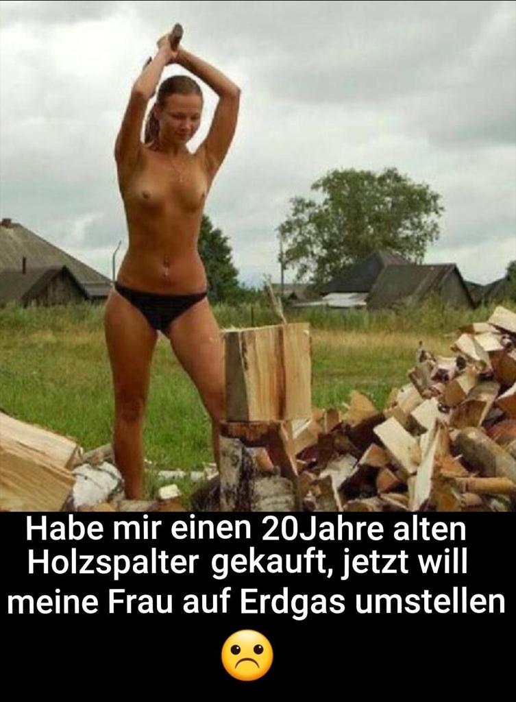 Holzspalter.jpg